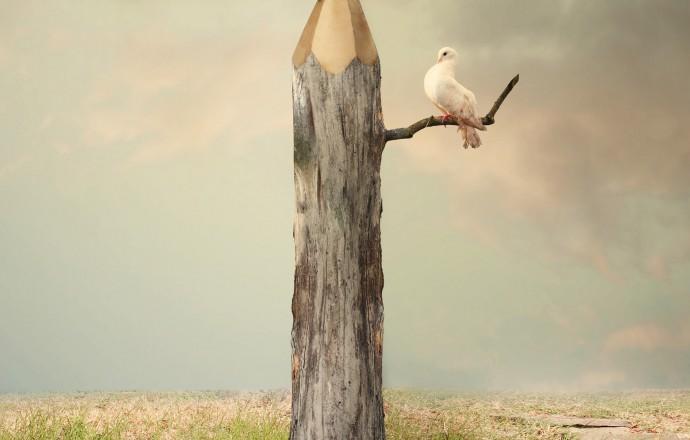 Penna som träd Calidris