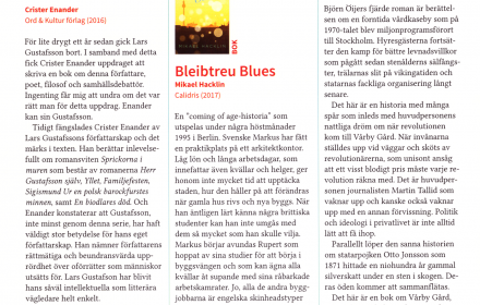 bleibtreu blues recension